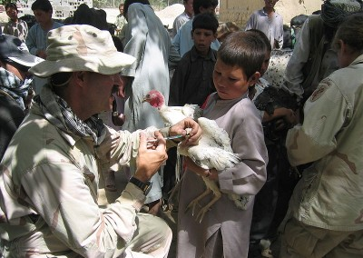 Afghanistan Poultry Value Chain Strategy